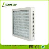 고성능 LED 플랜트 빛 1200W 가득 차있는 스펙트럼 Hydroponic LED는 빛을 증가한다