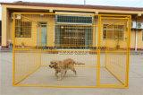 De gelaste Kennel van de Hond van het Netwerk van Metaal