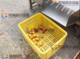 Máquina de classificação de frutas e vegetais à granada de laranja Orange Auotmatic