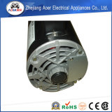 De Chinese Buitenboord Voorwaartse Omgekeerde Elektrische Motor van 120 V
