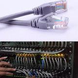 long Cat5e câble de fil de connexion de réseau de RJ45 de 1m 2m 3m 5m