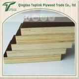 La película impresa insignia hizo frente al fabricante de la madera contrachapada