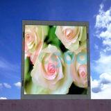P3 het Binnen Volledige LEIDENE van de Kleur Scherm van de Vertoning