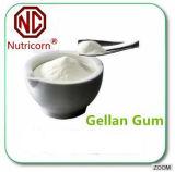 Fabrik-Verkauf Gellan Gummi-Puder