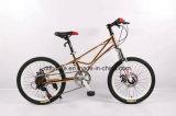 2018 Fahrrad des neuen Modell-MTB, Gebirgsfahrrad, Kind-Fahrrad,