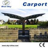 Aluminio policarbonato Doble cochera para Garaje (B810)