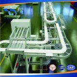 Горячая конвейерная /Food качества еды сбывания обрабатывая транспортеры