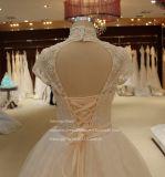 Aoliweiyaの高い首の不足分の袖はウェディングドレスにアップリケをつける