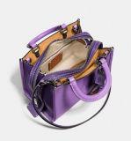 De de mini Zak of Handtassen van de Schouder van de Vrouwen van de Manier van de Grootte (bdx-171107)