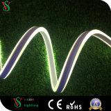 Indicatore luminoso al neon della flessione del LED (CE di VSRF-2W, RoHS)