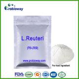 Ingrédient de nourriture de chocolat de laiterie de casse-croûte de Reuteri Probiotics de lactobacille