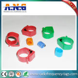 Wireless ABS RFID Boxing ring Tag 3G Pigeon Foot Boxing ring