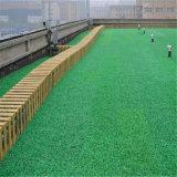 Het Synthetische ImitatieGras van uitstekende kwaliteit van het Gras