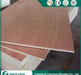 Buena calidad de la melamina frente Okoume contrachapado comercial de 1220x2440mm