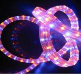 2018年のLEDの円形ロープライトLEDロープライト祝祭の装飾ライト