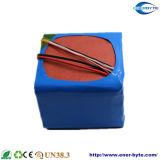 Paquetes del litio y de la batería LiFePO4 de Customerized