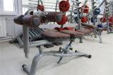 El ejercicio abdominal Siéntese Banco Peso (XW41)