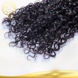 Trama d'oltremare umana dei capelli Remy della donna della Cina dell'onda del nero brasiliano riccio grezzo a buon mercato all'ingrosso del Virgin