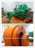 Turgo Hydro (Water)のタービンGenerator 55-335m Head/Hydropower/Hydroturbine