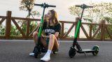 Scooter électrique E1 avec l'APP Koowheel E scooter