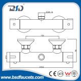 Двойник установленный стеной регулирует термостатический Faucet ливня