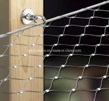 動物のための304ステンレス鋼ワイヤーロープの動物園の網