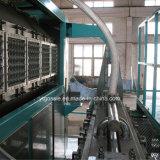 Automatisches Papiermassen-Ei-Tellersegment-Onlinevakuummaschine