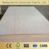 Venta caliente 1220*2440mm de contrachapado para el uso de muebles de pino
