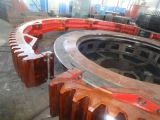De Ring van het toestel voor Roterende Ovens en Drogers
