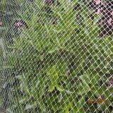 Plastiknetz/flaches Plastiknetz/Plastik, der Netz einzäunt