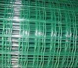 Покрынная Galvaized/PVC сваренная ячеистая сеть с аттестацией ISO9001 ISO14001 и TUV (фабрика)