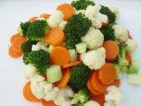 Mélange de légumes IQF de haute qualité