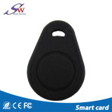 IDENTIFICATION RF Keyfob de forme et de puces de Customz