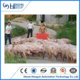 A placa Hurt de proteção popular do porco com bens engrossa o painel plástico