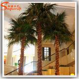 Guangzhou Paisaje cubierta artificial de Palm Tree Plantas