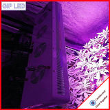 Chips PFEILER LED der gute Qualitäts126w Epileds wachsen helles 504W