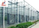 딸기 입체 음향 설치를 위한 유리제 온실