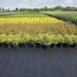 Высокое качество защиты растений с сорняками Net /тканью