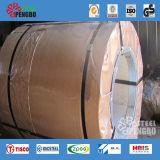 201 de Rollen van het roestvrij staal met Ce
