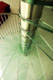 Escadaria espiral de vidro barata do aço inoxidável com o passo antiderrapante de Glas e os trilhos do aço inoxidável
