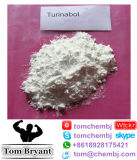 acetato 4-Chlorotestosterone/acetato CAS de Turinabol/Clostebol: 855-19-6 pó cru
