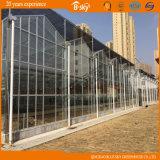 Serre chaude en verre de Multi-Envergure pour l'académie de Qingdao