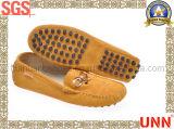 Chaussures occasionnelles en cuir (SD8102)