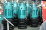 IP68와 물 누설 센서를 가진 잠수할 수 있는 모터에 의해 모는 수직 축 펌프