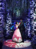 10000 lumens projecteur 80W utilisent la lumière de mariage avec nom et date