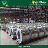 熱いGalvanziedかアルミニウムで処理された鋼鉄コイルのGIのコイルまたは冷間圧延された鋼鉄コイル