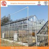Venlo Typ Sun-Vorstand-Gewächshäuser für das Pflanzen
