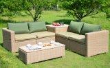 Insieme sezionale dello strato del sofà esterno della mobilia