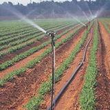 Aspersion d'irrigation Irrigation d'arrosage pour système d'irrigation agricole