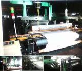 Velvad와 Velveteen Shuttle Rapier Loom Machine (TGD788-III)